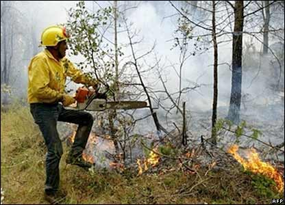 A fireman battles a forest fire in the Garrigoles Alt Amporda area near Girona, north-eastern Spain, 5 Aug 06