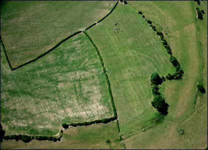 The second of the Neolithic causeways was found at St Athan in the Vale of Glamorgan is older than the Egyptian Pyramids