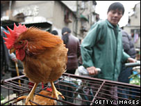 A rooster on sale in a Shanghai market in February 2006