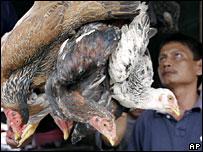 Un vendedor de gallinas en un mercado en el norte de Sumatra.