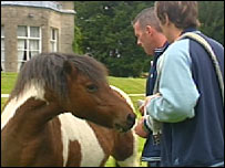 Patients with a horse