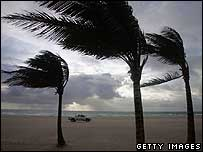 Winds blow through palm trees on Miami Beach, Florida after Ernesto came ashore