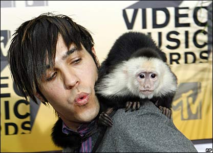 Peter Wentz from Fall Out Boy, with a monkey