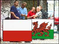 Migrant workers and Polish and Welsh flags