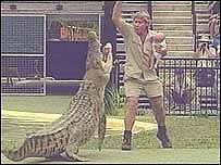 Steve Irwin con su hijo, frente a un cocodrilo
