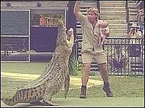 Steve Irwin con su hijo, frente a un cocodrilo