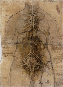 """Irrigation systems"" of the female body; respiratory, vascular and urino-genital (c.1507-8)."