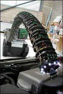 Snake-arm robot (OC)