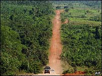 Camino en la selva amazónica