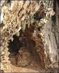 Gorham's Cave (Gibraltar Museum)
