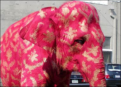 Elephant painted for exhibition