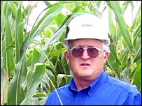 Steve Burnett in a maize field (Photo by Ian Brimacombe for the BBC News website)