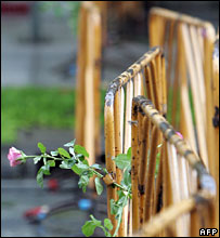 Flowers on a barricade outside Government House - 20/9/06