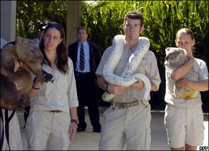 Zoo keepers and animals