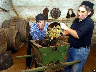 Грузинские виноделы не хотят объединяться под единый бренд