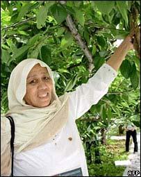 Safia Amajan