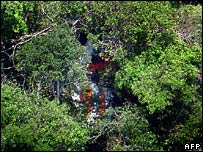 Wreckage from the plane in dense jungle