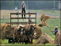 An Amish farmer and two young boy bring in dried hay at a farm in Ohio, US
