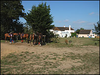 Jack Kidd's horses and house