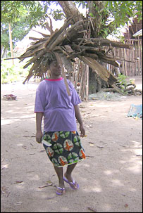 Woman carrying wood.  Image: BBC