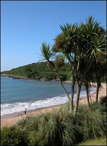 Diane Jones sent in this shot of Langland Bay in the sunshine.