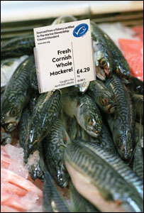 MSC certified fish on sale in a supermarket (Image: MSC)