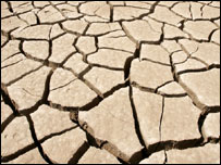Cracked soil (Image: AP)
