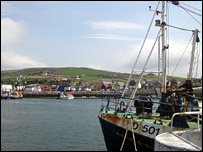 Dingle harbour is famous for its celebrity dolphin 'Fungie'.