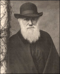 Darwin in 1881 (Darwin, F. and Seward, A. C. eds. 1903 - Cam Uni)