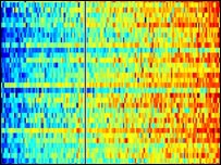 Image of a gene profile from the test