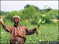 Afghan poppy farmer