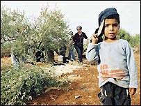 Niño en campo palestino (Foto: Machsom Watch)