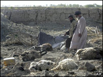 Villagers survey livestock killed in one of the raids