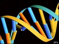 Imagen de ADN.