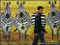 A poster of zebra in Beijing