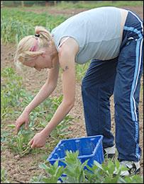 Kate digging