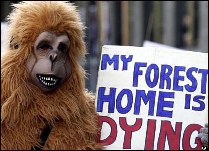 Campaigner in animal costume