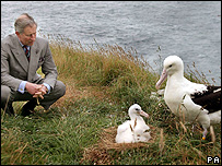 Prince Charles alongside two albatrosses (Image: PA)