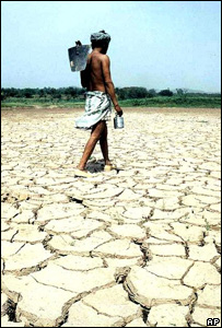 Farmer walking across drought-hit land (Image: AP)