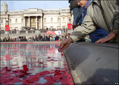 Thousands of poppy petals are placed in the fountains at Trafalgar Square 