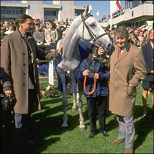 Desert Orchid pictured at Sandown