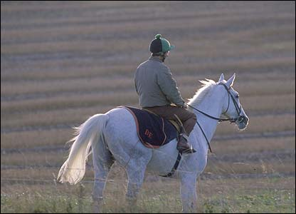 Desert Orchid being ridden out