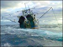 Pesquero de arrastre (Roger Grace/Greenpeace)