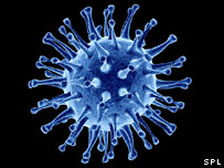 Computer artwork of avian flu virus (Science Photo Library/ Pasieka)