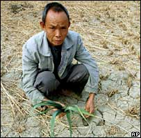 A villager in a drought-hit field in south-west China