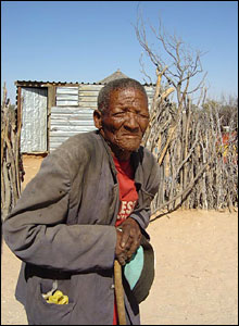 Old man in bushmen settlement  (file picture)