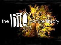 The Big Picture Library