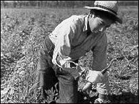 A farm worker in the 1930s