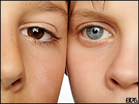 Children with different eye colours  Image: Science Photo Library