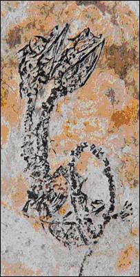 Reptil cret�cico de dos cabezas FOTO: CNRS